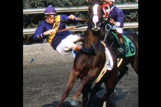 0-1a Horse racing spill