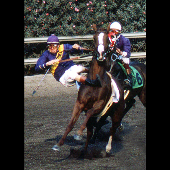 "1984 - Horse racing coverage as the ""official"" L.A. County Fair photographer"