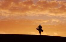 Golf - golfer-sunset - 8x72